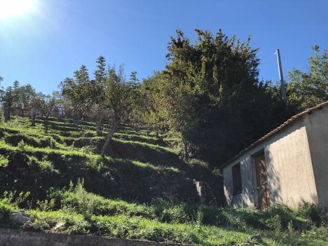 Serra San Bruno Itineramag